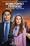 Picture Perfect Mysteries: Newlywed and Dead (2019)