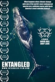 Entangled: The Race to Save Right Whales from Extinction Poster