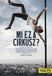 Mi ez a cirkusz? Poster
