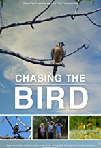 Chasing the Bird