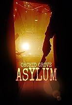 Orchid Grove: Asylum