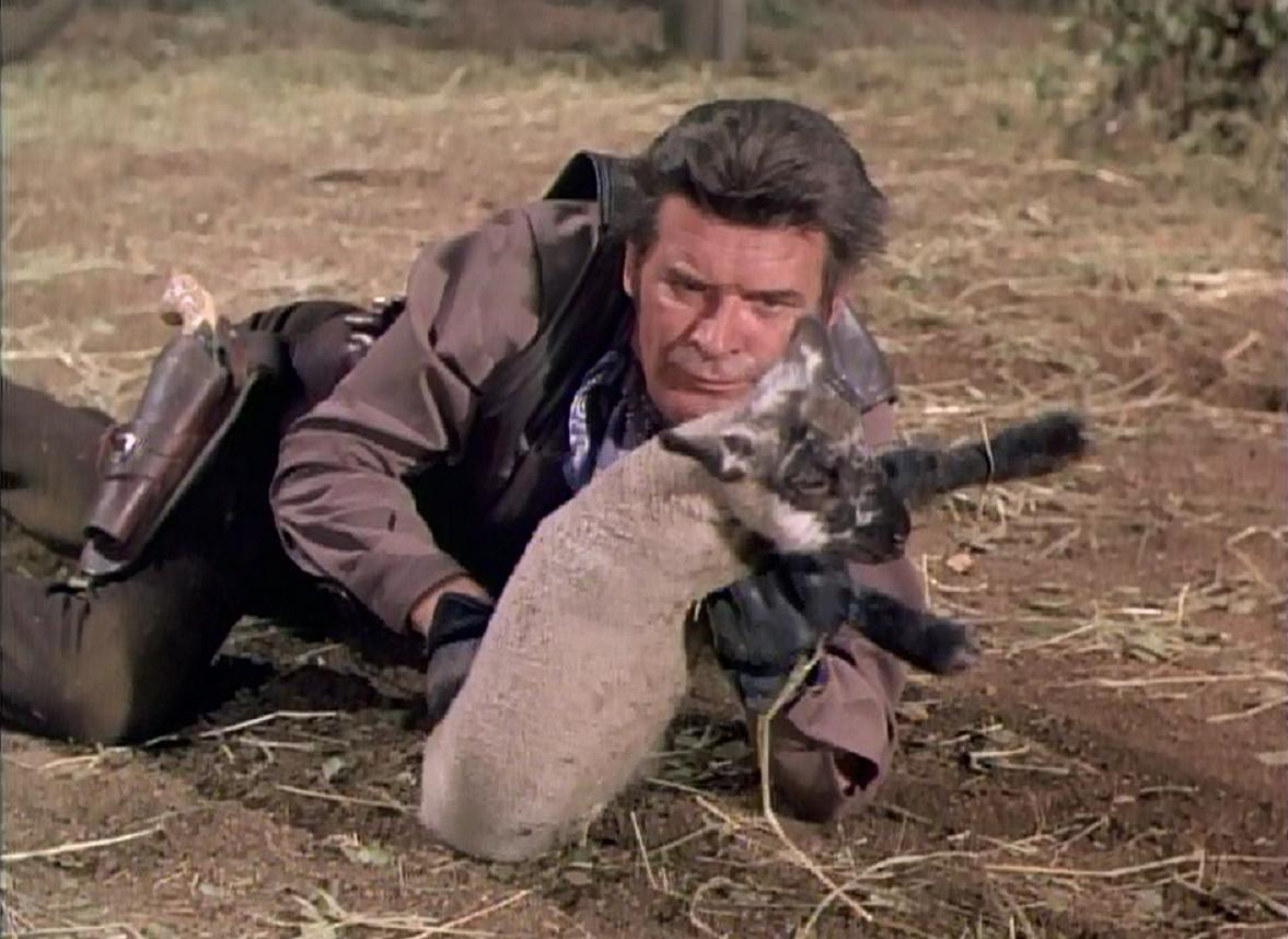 The Big Valley A Flock Of Trouble Tv Episode 1967 Imdb