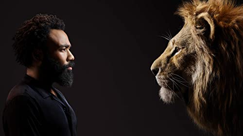 The Rise of Donald Glover