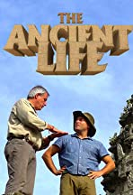 The Ancient Life