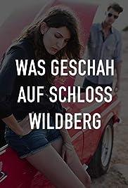 Was geschah auf Schloß Wildberg Poster