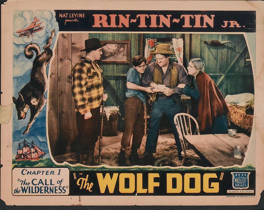 Frankie Darro, Fred Kohler, Sarah Padden, Max Wagner, and Rin Tin Tin Jr. in The Wolf Dog (1933)