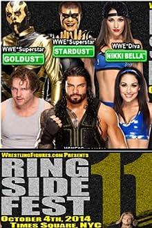 WWE at Ringside Fest (2014 Video)