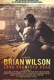 Brian Wilson: Long Promised Road (2021)