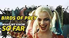 'Birds of Prey (And the Fantabulous Emancipation of One Harley Quinn'