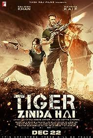 Salman Khan in Ek Tha Tiger (2012)