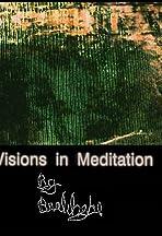 Visions in Meditation