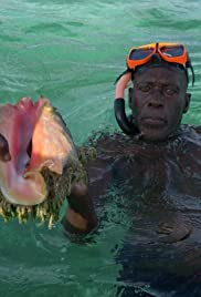 For the Love of Conch Poster