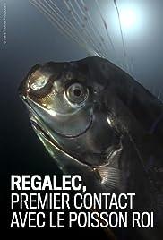 Régalec, premiers contacts avec le poisson roi Poster
