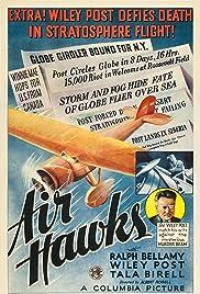 Air Hawks Poster