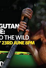 Orangutan Rescue: Back to the Wild Poster