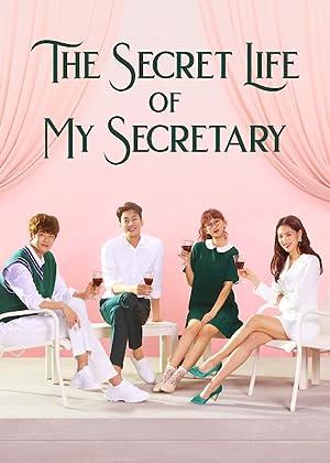 دانلود سریال The Secret Life of My Secretary