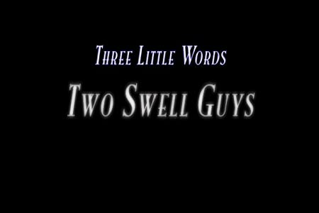 High quality movie downloads Two Swell Guys by none [480x854]
