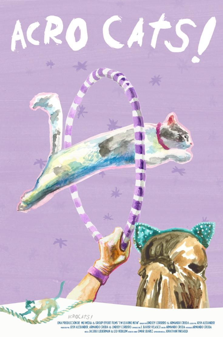 Samantha's Amazing Acro-Cats on FREECABLE TV