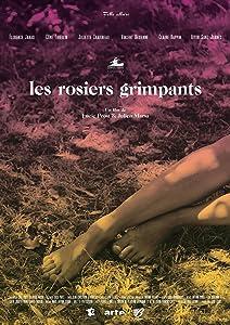 Divx-Film-Downloads kostenlos Les rosiers grimpants by Julien Marsa, Lucie Prost  [4k] [720x576] [1920x1200] (2016)