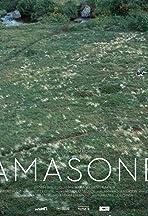 Amasone