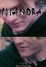 Niandra