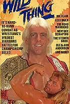 WCW/NWA WrestleWar 1990: Wild Thing