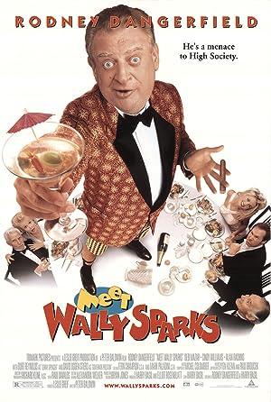 Meet Wally Sparks (1997)