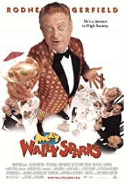 Meet Wally Sparks Poster