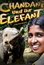Chandani: The Daughter of the Elephant Whisperer (2010) Poster