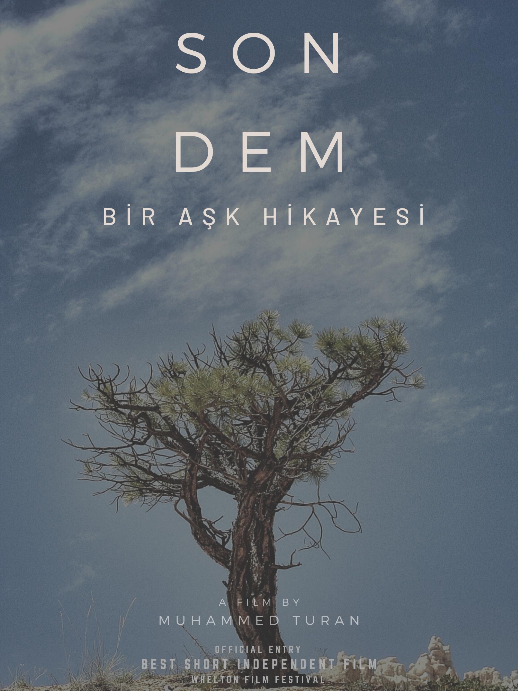 Best Short Books 2020 Son Dem   Bir Ask Hikayesi (Video 2020)   IMDb