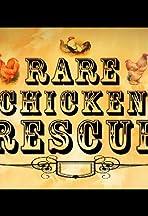 Rare Chicken Rescue