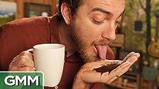 Cat Poop Coffee Taste Test