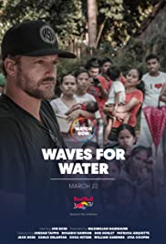 Waves for Water Poster