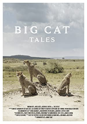 Where to stream Big Cat Tales