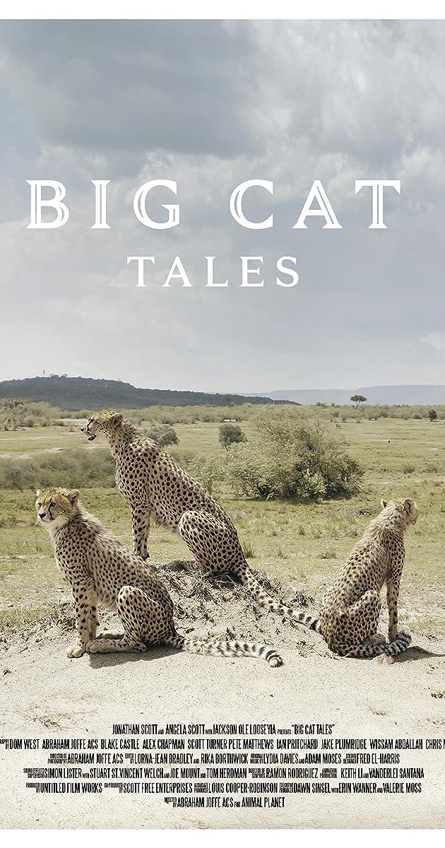 Descargar Big Cat Tales Temporada 1 capitulos completos en español latino