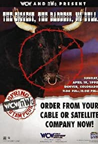 Primary photo for WCW/NWO Spring Stampede