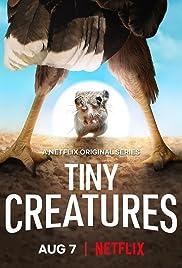 Tiny Creatures (2020– )