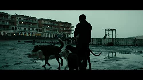In a seaside village on the outskirts of an Italian city, where the only law seems to be survival of the fittest, Marcello is a slight, mild-mannered man who divides his days between working at his modest dog grooming salon, caring for his daughter Alida, and being coerced into the petty criminal schemes of the local bully Simoncino, an ex-boxer who terrorizes the neighborhood. When Simoncino's abuse finally brings Marcello to a breaking point, he decides to stand up for his own dignity through an act of vengeance, with unintended consequences.