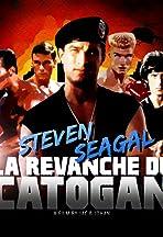 Steven Seagal, la revanche du Catogan