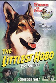 Primary photo for The Littlest Hobo