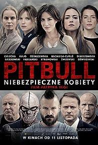 Primary photo for Pitbull: Tough Women