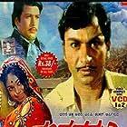 Gandhada Gudi (1973)