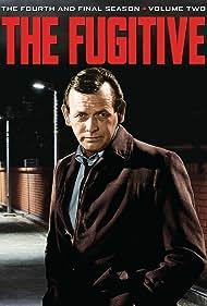 The Fugitive (1963) Poster - TV Show Forum, Cast, Reviews
