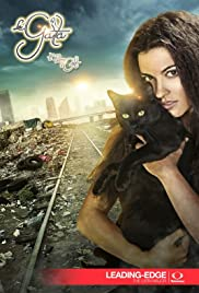 The Stray Cat Poster