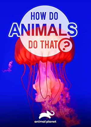 Where to stream How Do Animals Do That?