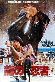 Ninja in the Dragon's Den Poster