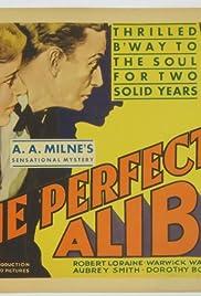 The Perfect Alibi Poster