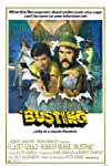 Busting (1974)