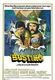 Busting (1974) 1080p