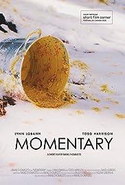 Momentary Poster